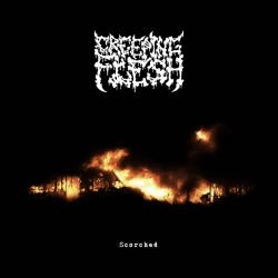 Creeping Flesh - Scorched (Demo)