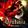 Destinia – Metal Souls