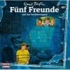 Fünf Freunde - und das Familienwappen (89)