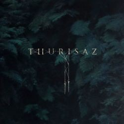Thurisaz-Re-Incentive